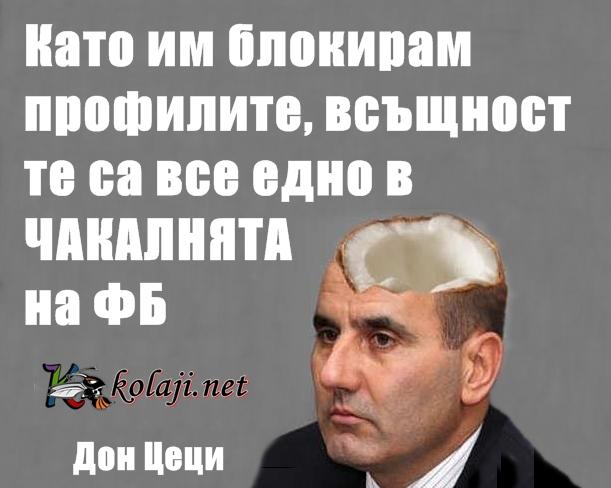 Дон Цеци